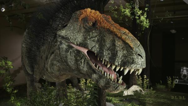 Tyrannosaurus rex: Nová odhalení