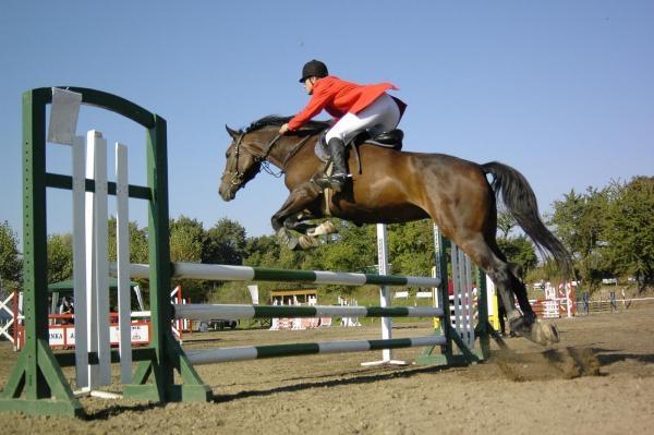 Jezdectví: Mezinárodní parkurové závody CSI-W Olomouc