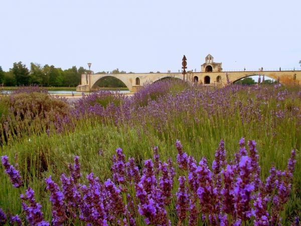 Dokument Lidé, země, dobrodružství: Provence