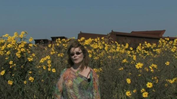 Dokument Evropa jedna báseň: Doris Kareva