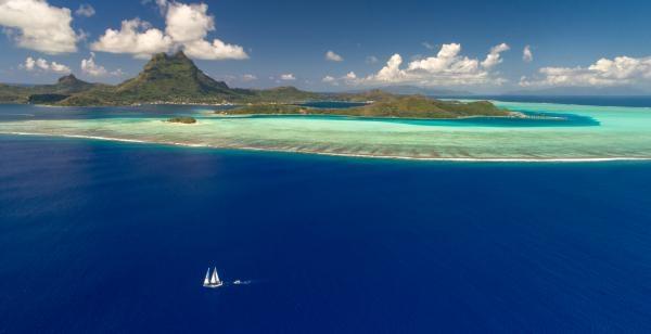 Dokument Polynésie: Hledání v hlubinách