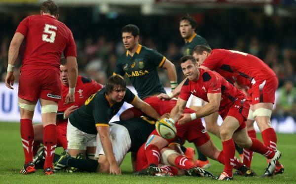 Ragby: Wales - Jihoafrická republika