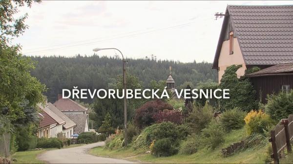 Dřevorubecká vesnice