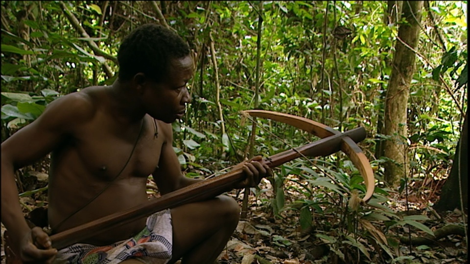 Dokument Poslední lovci v Kamerunu