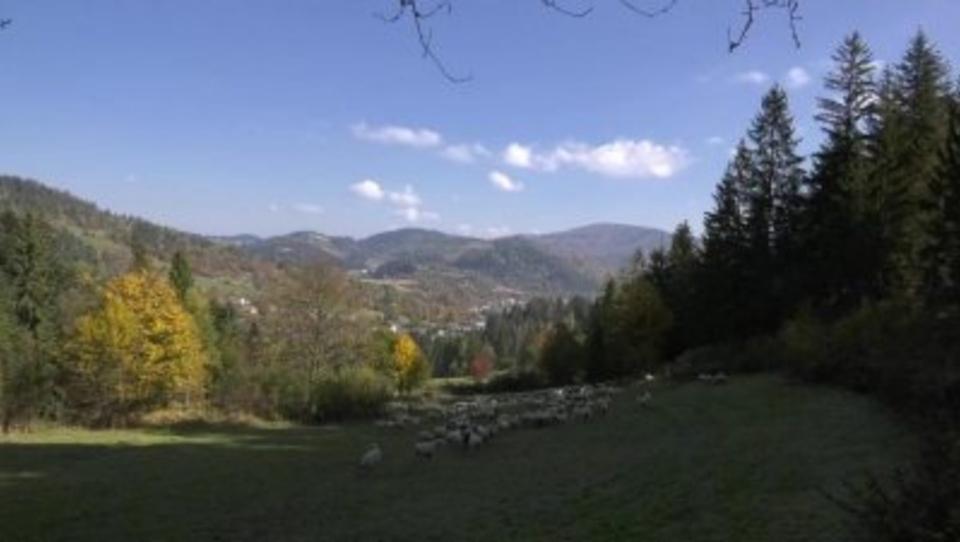 Documentary Proměny Oščadnice