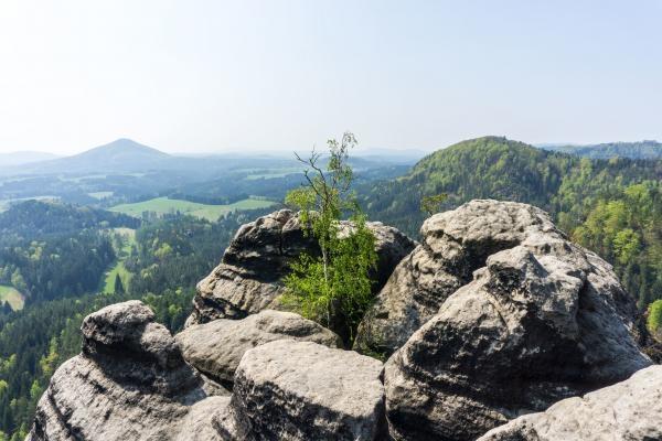 Sport v regionech: Nahoru na horu, České Švýcarsko