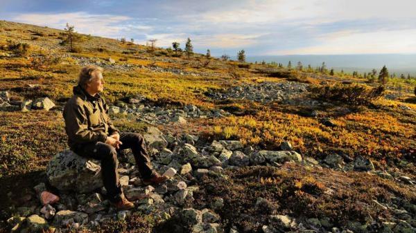 Čaro fínskej divočiny