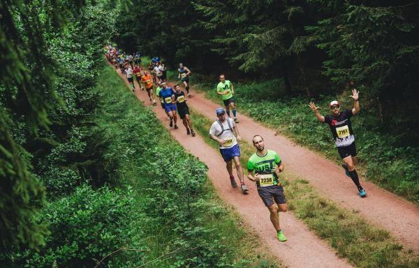 Běhej lesy – Brdy