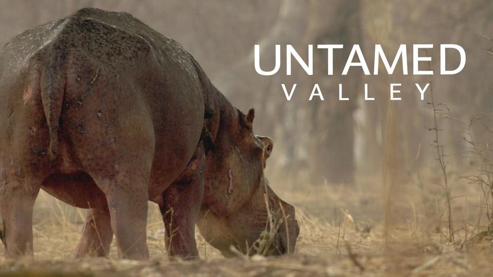 Documentary Nezkrocené údolí