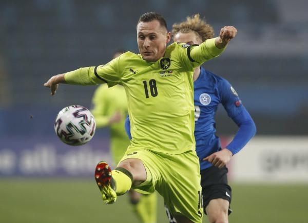 Fotbal: Česko - Albánie