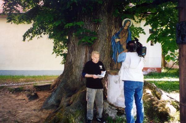 Dokument Paměť stromů