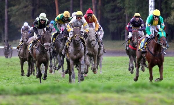 Sezona v sedle 2012 - Jezdecký sport