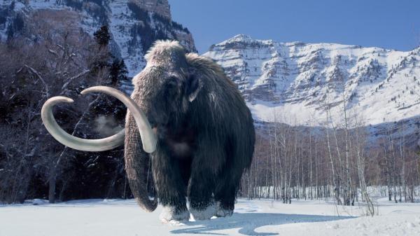 Dokument Mamut: Titán doby ledové