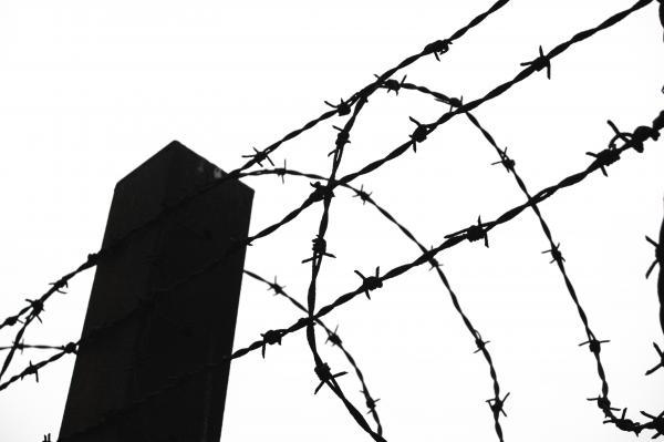 Dokument Řezník z Mauthausenu