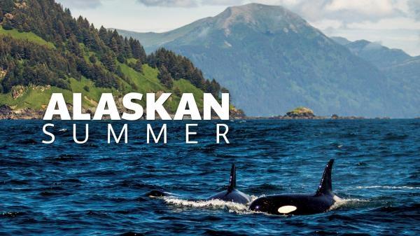 Dokument Léto na Aljašce