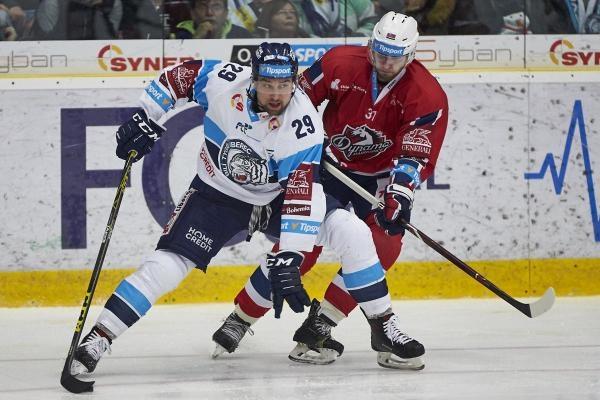 Hokej: HC Dynamo Pardubice - Bílí Tygři Liberec